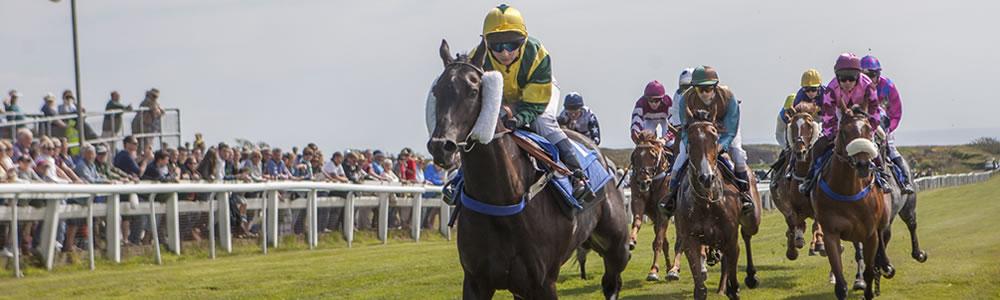 jersey horse racing